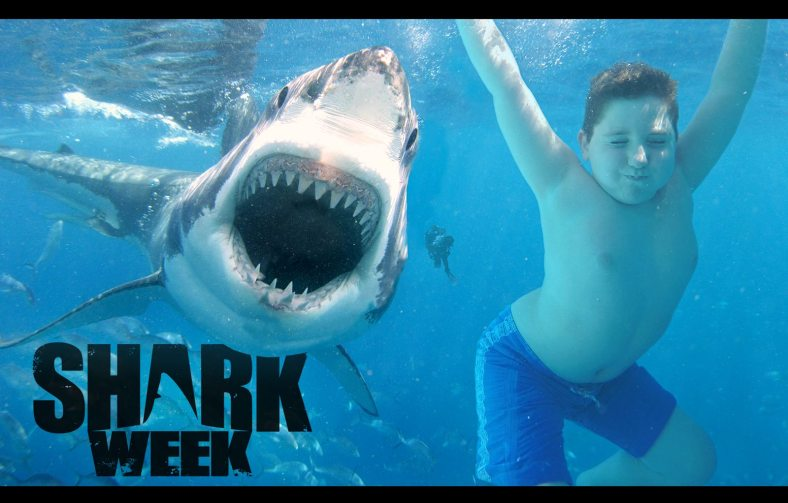My son loves to swim with the sharks.